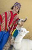 Um menino peruano com os lamas em Cusco no Peru Imagem de Stock Royalty Free