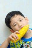 Um menino que come o milho fervido Fotografia de Stock Royalty Free