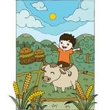 Um menino que monta um búfalo no campo Foto de Stock Royalty Free