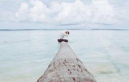 Um menino senta-se na árvore de coco fotos de stock