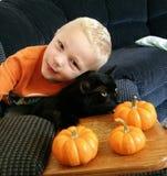 Um menino, seu gato e abóboras fotos de stock royalty free