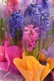 Um mercado da flor da mola: flores coloridas brilhantes em uma caixa plástica Imagem de Stock