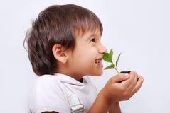 Um miúdo bonito pequeno com planta Imagens de Stock