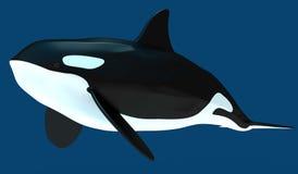 Um modelo de uma baleia de assassino estilizado ilustração 3D Fotos de Stock