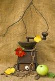 Um moinho de café com feijões, uma maçã e uma rosa Imagens de Stock