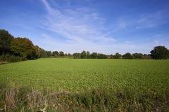 Um moinho de vento em uma imagem da paisagem fotos de stock royalty free