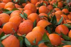 Um montão das laranjas fotografia de stock