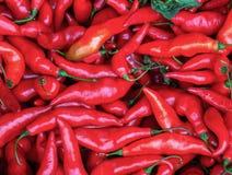 Um montão de pimentas de pimentão vermelho fotos de stock