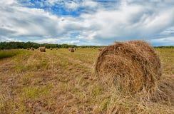Um monte de feno em um fundo da grama cortada em um dia de verão ensolarado com céus nebulosos Imagem de Stock