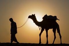 Um motorista do camelo anda com seu camelo na luz do sol imagem de stock