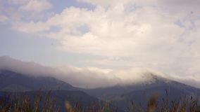 Um movimento acelerado das nuvens sobre as montanhas ucrânia Carpathians dia de verão de 2017 anos nas montanhas video estoque