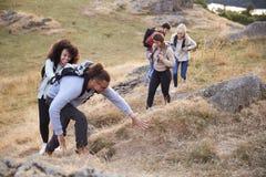 Um multi grupo étnico de cinco amigos adultos novos sorri ao escalar à cimeira durante uma caminhada da montanha, fim acima fotos de stock