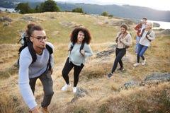 Um multi grupo étnico de cinco amigos adultos novos sorri ao escalar à cimeira durante uma caminhada da montanha, fim acima foto de stock