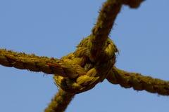 Um nó da corda Fotografia de Stock Royalty Free