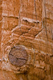Um nó em uma parte de madeira Fotos de Stock Royalty Free