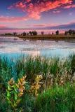 Um nascer do sol de setembro Fotos de Stock Royalty Free