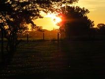 Um nascer do sol impressionante Fotografia de Stock