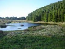 Um Natureza nenhum puro dos mais do estado do seu! Fotografia de Stock Royalty Free