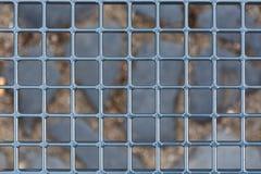 Um olhar no mundo através das barras cinzentas imagem de stock