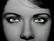 Um olho perspicaz bonito do olhar Feche acima do tiro fotos de stock