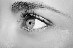 Um olho perspicaz bonito do ` s da mulher do olhar Imagens de Stock
