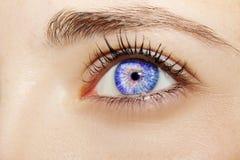 Um olho perspicaz bonito do ` s da mulher do olhar Feche acima do tiro Fotos de Stock