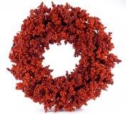 Um ornamento vermelho brilhante do Natal Foto de Stock