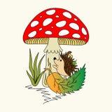 Um ouriço dos desenhos animados no cogumelo Imagem de Stock