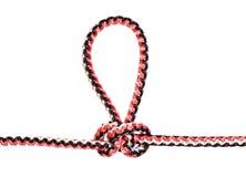 Um outro laço alpino lateral do chicote de fios do nó da borboleta fotografia de stock royalty free