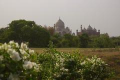 Um outro lado de Taj Mahal Foto de Stock Royalty Free