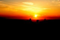 Um outro por do sol Imagem de Stock Royalty Free