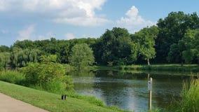 Um outro tiro do lago Imagem de Stock Royalty Free
