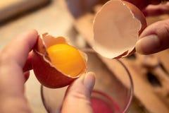 Um ovo é aberto e separado imagens de stock royalty free