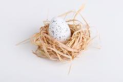 Um ovo da páscoa no ninho no branco Imagem de Stock