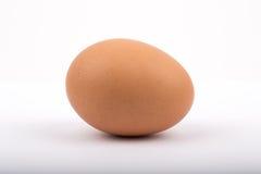 Um ovo em um fundo branco Fotos de Stock