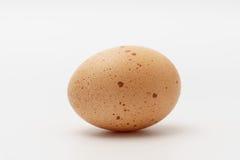 Um ovo em um fundo branco Foto de Stock Royalty Free