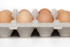 Um ovo marrom Foto de Stock Royalty Free