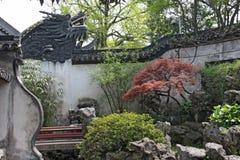 Um pátio chinês interno pequeno e árvores Cidade de Shanghai fotos de stock