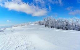 Um país das maravilhas do inverno imagens de stock royalty free
