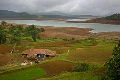 Terra de cultivo indiana Imagens de Stock