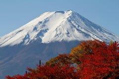Monte Fuji com pagode imagem de stock