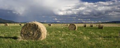 Um pano do feno em um campo. foto de stock