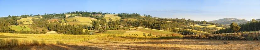 um panorama de 180 graus de Etiópia Imagem de Stock