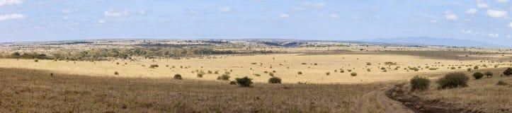 um panorama de 180 graus de Kenya Fotografia de Stock