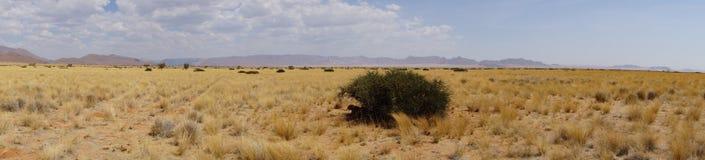Um panorama em Namíbia Imagens de Stock Royalty Free