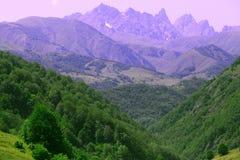 Um panorama majestoso de uma cordilheira rochosa com floresta-covere fotos de stock royalty free
