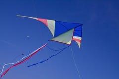 Um papagaio grande no céu azul Fotografia de Stock Royalty Free
