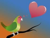 Um papagaio no amor Foto de Stock