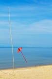 Um papagaio vermelho na praia Imagens de Stock Royalty Free