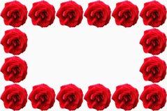 Um papel de parede das rosas Fotos de Stock Royalty Free